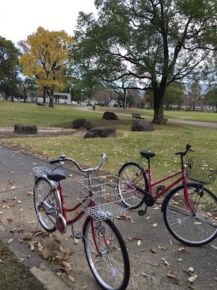 宮崎総合文化公園までサイクリング