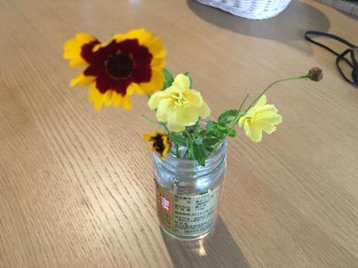 7月の大淀川河川敷に咲く花ハルシャギクやネジバナを瓶に入れて