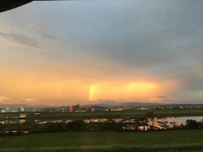 宮崎の金木犀の花たちと曇りの虹