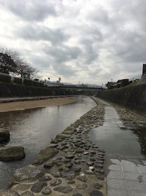 春日の牛頸川(うしくびがわ)の散歩