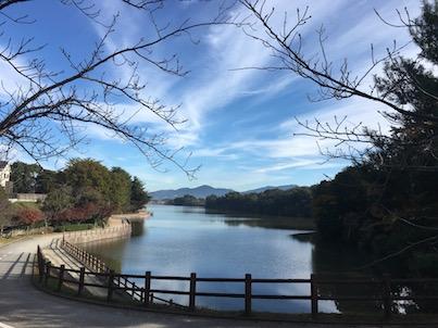 春日の白水大池公園の池と空と木々