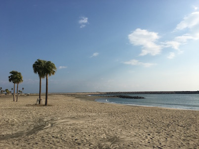 宮崎市臨海公園の海と砂浜(ビーチ)を見てきました。