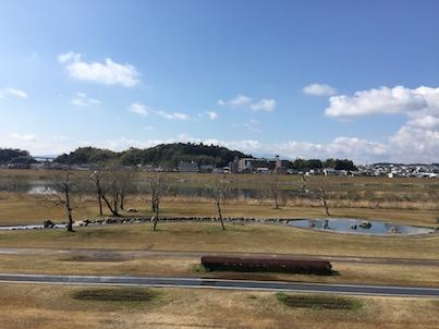 大淀川河川敷の水辺がある公園