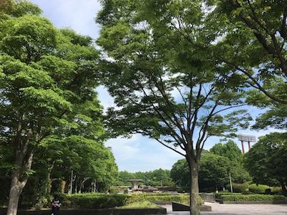 福岡県春日市の春日公園の噴水まで歩いてみたら・・