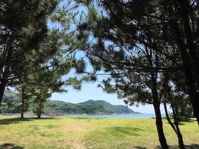 日向市の伊勢ケ浜と大御神社に行きました
