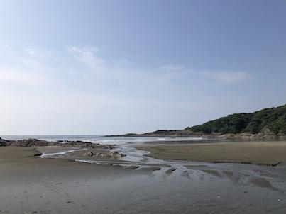 日向市伊勢ケ浜と猫6月22日の風景
