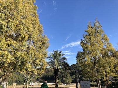 福岡県大野城市の牛頸ダムの水辺公園と虹色の光!